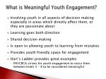 what is meaningful youth engagement1