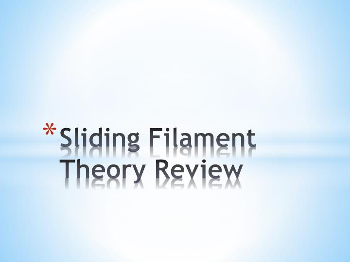 sliding filament theory review n.