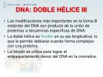 dna doble h lice iii