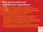 what are the policy and programmatic implications