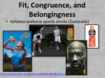fit congruence and belongingness2