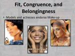 fit congruence and belongingness3