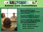 animal care committees
