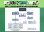 organizational structure for animal ethics and facilities at the university of alberta