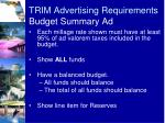 trim advertising requirements budget summary ad1