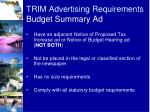 trim advertising requirements budget summary ad2