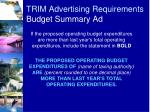 trim advertising requirements budget summary ad3