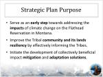 strategic plan purpose