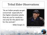 tribal elder observations1