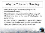 why the tribes are planning