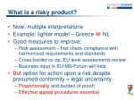 what is a risky product