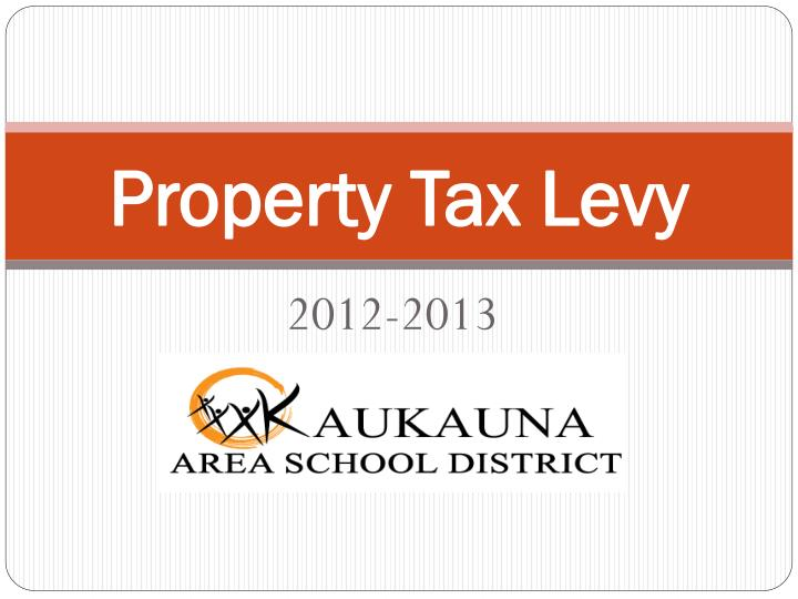 property tax levy n.