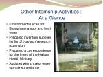 other internship activities at a glance1