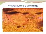 results summary of findings1