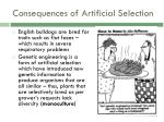 consequences of artificial selection