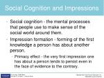 social cognition and impressions