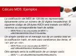 c lculo md5 ejemplos