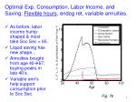 optimal exp consumption labor income and saving flexible hours endog ret variable annuities