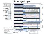damage repair