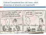 cultural competence how do i know which dimensions of diversity are important