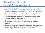 dimensions of diversity petesch thalayasingam