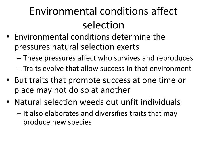 Environmental conditions affect selection