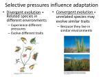 selective pressures influence adaptation