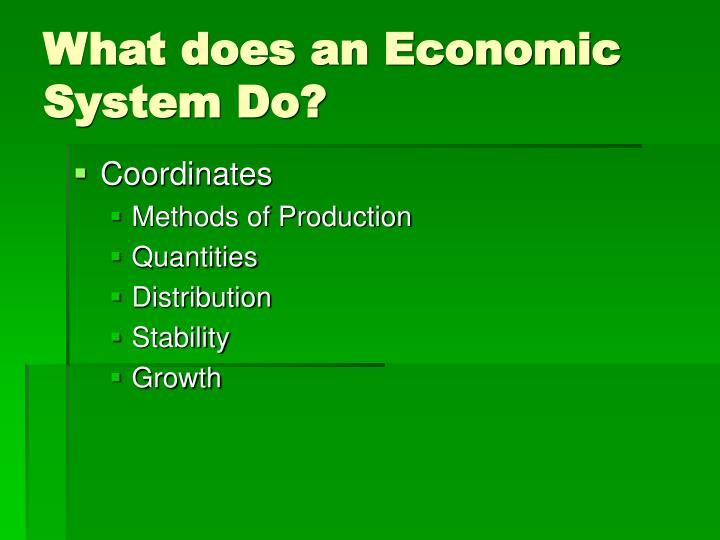 What does an Economic System Do?