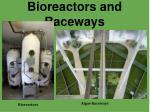 bioreactors and raceways