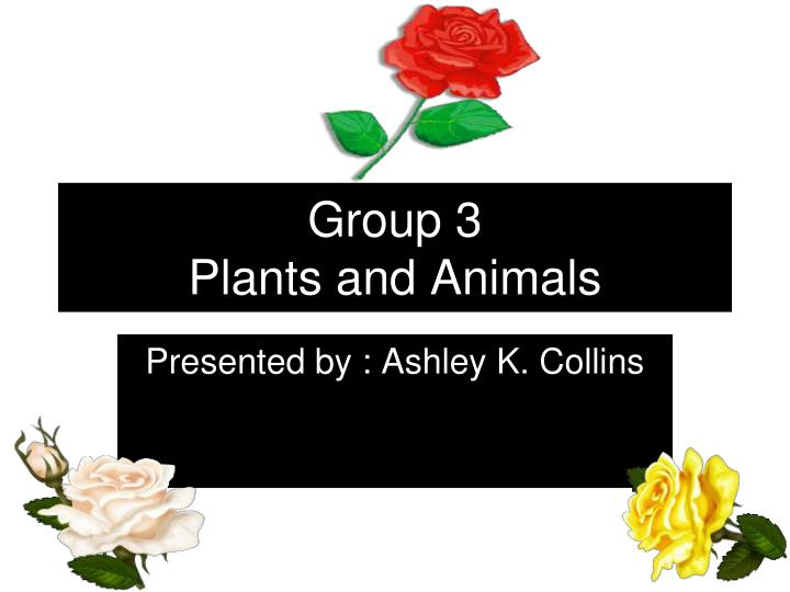 group 3 plants and animals n.