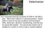 v eterinarian