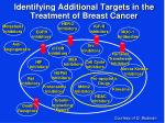 identifying additional targets in the treatment of breast cancer