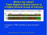 what s the latest triple negative breast cancer is a highly diverse group of cancers
