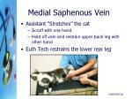 medial saphenous vein1