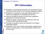 wp 5 deliverables