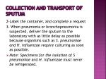 collection and transport of sputum2