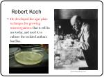 robert koch1