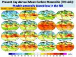 present day annual mean carbon monoxide oh sink models generally biased low in the nh