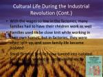 cultural life during the industrial revolution cont