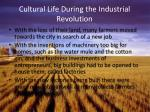 cultural life during the industrial revolution