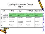 leading causes of death 2007