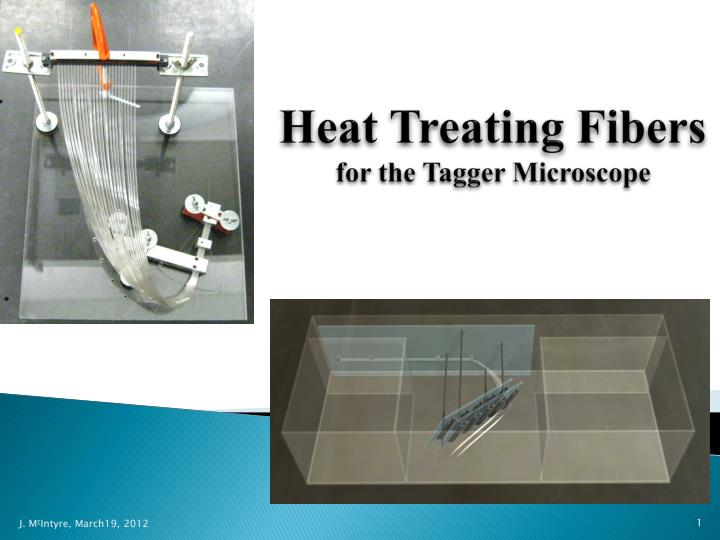 heat treating fibers for the tagger microscope n.