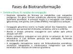 fases da biotransforma o1