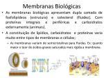 membranas biol gicas