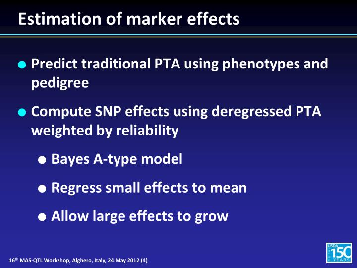 Estimation of marker effects