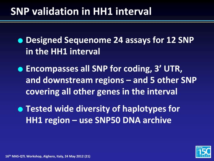 SNP validation in HH1 interval
