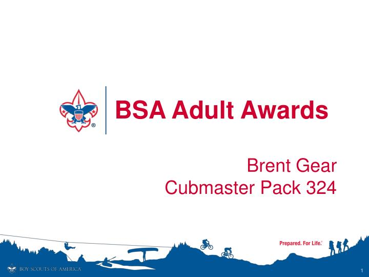 bsa adult awards n.