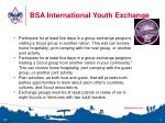 bsa international youth exchange