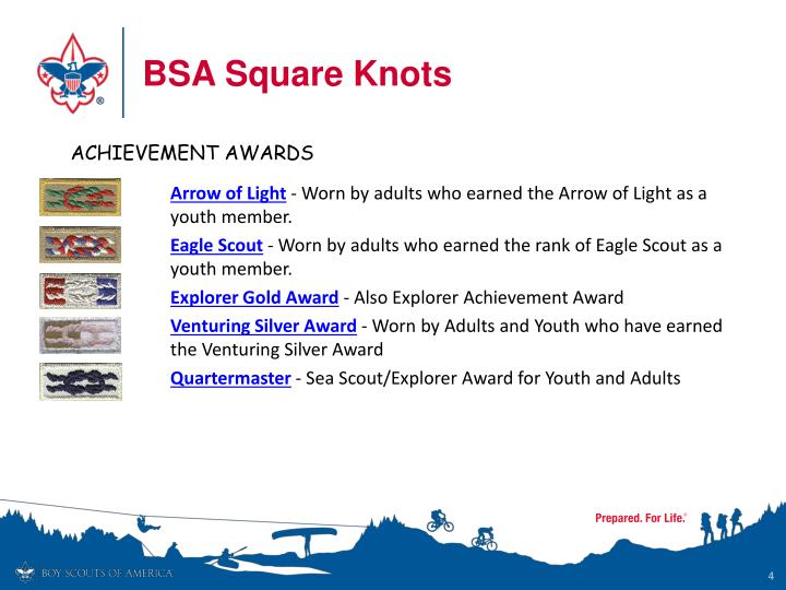 Boy scout adult awards — 5