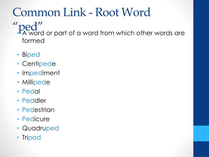 Common link root word ped